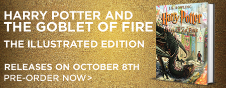 Pre-Order Harry Potter and The Goblet of Fire The Illustrated Edition