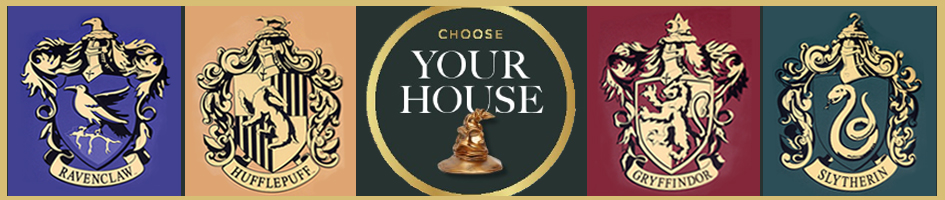 Harry Potter Choose Your House Banner